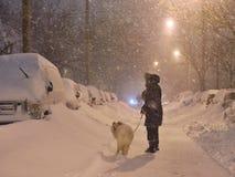 Una donna con il cane Fotografia Stock Libera da Diritti