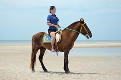 Una donna con il cavallo Immagini Stock Libere da Diritti