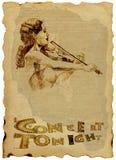 Una donna con il violino Immagine Stock Libera da Diritti