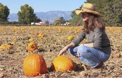 Una donna confronta le zucche in una toppa della zucca Fotografia Stock