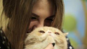 Una donna della ragazza dell'asiatico gioca i colpi un gatto beige siamese, quindi sguardo alla macchina fotografica ed ai sorris stock footage