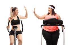 Una donna esile e una donna di peso eccessivo che si esercita ed alta--fiving fotografia stock libera da diritti