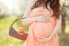 Una donna incinta in un giardino della molla con il canestro Fotografia Stock