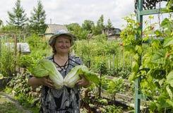Una donna nel paese sta tenendo un cavolo cinese Fotografia Stock