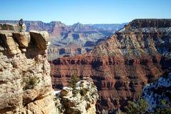 Una donna osserva il grande canyon fotografia stock