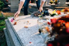 Una donna pulisce la tomba immagine stock libera da diritti