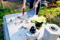 Una donna pulisce la tomba fotografie stock libere da diritti