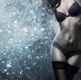 Una donna sexy che posa in biancheria erotica e pelliccia Immagini Stock