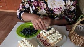 Una donna sta facendo un dolce Strati degli strati dei biscotti e della crema di savoiardi Decorato con i mirtilli video d archivio