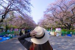 Una donna sta facendo un giro turistico dentro il parco di Ueno durante il fiore di ciliegia di festival di Hanami della molla fotografie stock libere da diritti