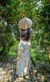 Una donna vietnamita in vestito tradizionale immagini stock