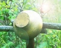 Una ejecución del pote del arrabio en una cerca en el aire abierto en el verano Foto de archivo