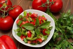 Una ensalada de las verduras frescas Imagen de archivo