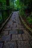 Una entrada empedrada de la capilla de Hakone, en el bosque en Japón fotos de archivo