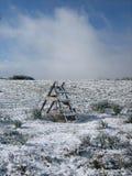 Una escalera cubierta por la nieve Imagenes de archivo
