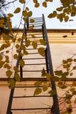 Una escalera del hierro lleva al tejado Foto de archivo