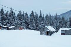 Una escena nevosa del invierno con la nieve que cae de la región cárpata, Ucrania, Europa Fotografía de archivo