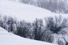 Una escena nevosa del invierno con la nieve que cae de la región cárpata, Ucrania, Europa Fotos de archivo libres de regalías