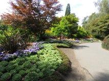 Una esquina en la reina Elizabeth Park, Vancouver, Canadá fotos de archivo