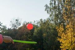 Una estafa de tenis en su mano coge la bola en el movimiento Imagenes de archivo