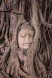 Una estatua de Buda del gigante considera hacia fuera sobre Tailandia céntrica la puesta del sol Foto de archivo
