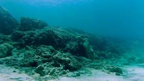 Una estatua sola en la parte inferior del mar almacen de video