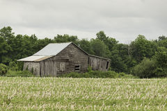 Una estructura abandonada del granero de la granja foto de archivo libre de regalías