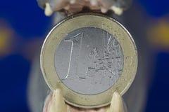 Una euro moneta in bocca della figurina dell'ippopotamo Immagini Stock
