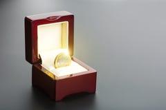 Una euro moneta nella scatola Immagini Stock