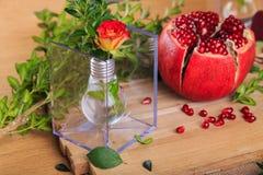 Una exposición hermosa de lámparas y de frutas Imagen de archivo