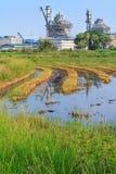 Una fábrica cerca por un campo del arroz fotos de archivo libres de regalías