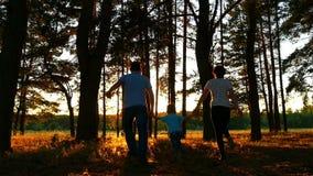 Una famiglia felice di tre genti che si tengono per mano camminata attraverso la foresta contro lo sfondo di un tramonto video d archivio