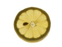 Una fetta di limone Immagine Stock