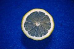 Una fetta di limone Immagini Stock