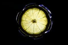 Una fetta di limone gradisce un fiocco di neve Immagine Stock