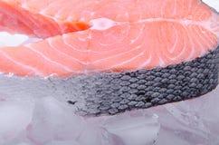 Una fetta di pesci rossi - salmoni, su ghiaccio Fotografie Stock Libere da Diritti