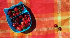Una fiambrera azul con las cerezas y las fresas en la tela escocesa roja brillante en la playa Imagenes de archivo