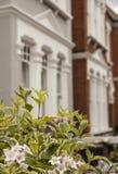 Una fila de casas con algunas flores en el primero plano Foto de archivo