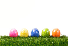 Una fila de cinco huevos de Pascua coloridos en la hierba verde aislada en wh Fotografía de archivo libre de regalías