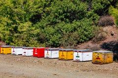 Una fila de la abeja colorida de madera encorcha en verano Fotografía de archivo libre de regalías