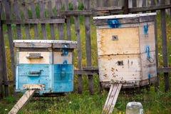 Una fila de la abeja encorcha en un campo El apicultor en el campo de flores Las colmenas en un colmenar con las abejas que vuela Foto de archivo libre de regalías
