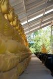 Una fila de las estatuas de bronce de Bhudda Foto de archivo libre de regalías