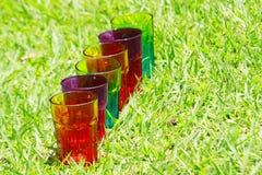 Una fila de los vidrios del arco iris en la hierba Imágenes de archivo libres de regalías