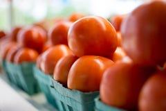 Una fila dei pomodori nostrani su esposizione immagine stock libera da diritti