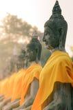 Una fila delle statue di Buddha messe pacificamente a Wat Yai Chaimongkol Fotografia Stock