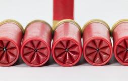 Una fila di 12 cartucce per fucili a canna liscia del calibro con una piegatura perfetta Immagine Stock