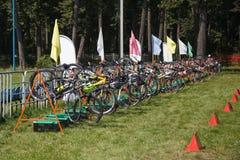 Una fila di molte biciclette Immagine Stock Libera da Diritti