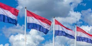 Una fila di quattro bandiere nazionali olandesi Immagine Stock Libera da Diritti