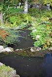 Una fine su di uno stagno ha tagliato in due livelli, circondati dagli arbusti, alberi delle felci ed erba e un ponte adorabile n fotografie stock libere da diritti