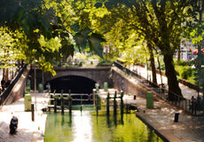 Una fine sulla foglia un giorno soleggiato al canale San Martino a Parigi Immagine Stock